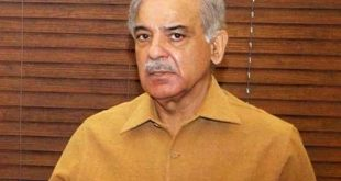 bench hearing Shahbaz Sharif's bail