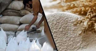 provide cheap flour to the people