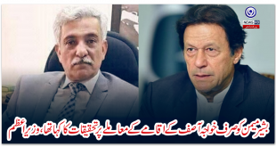 Bashir-Memon-was-only-asked-to-investigate-the-issue-of-Khawaja-Asifs-stay-Prime-Minister